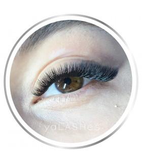 Schulungen Hypervolume – Wimpernverlängerung ab 4D und mehr