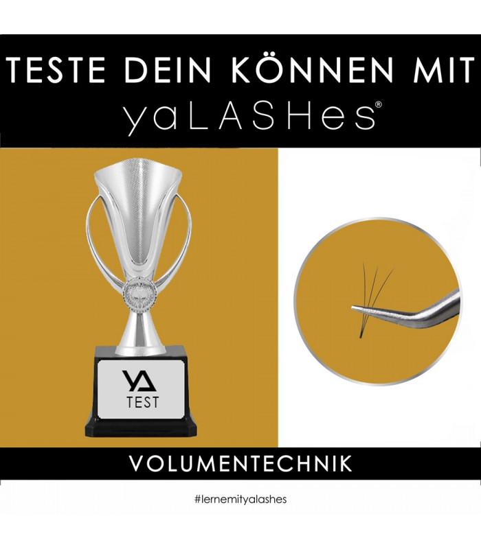 Schulungen TESTE DEIN KÖNNEN mit yaLASHes (Volumentechnik)
