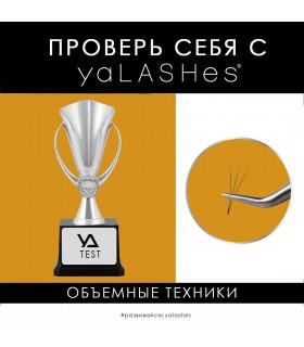 """Обучение Тест: """"Проверь себя с yaLASHes"""" (Объёмы)"""