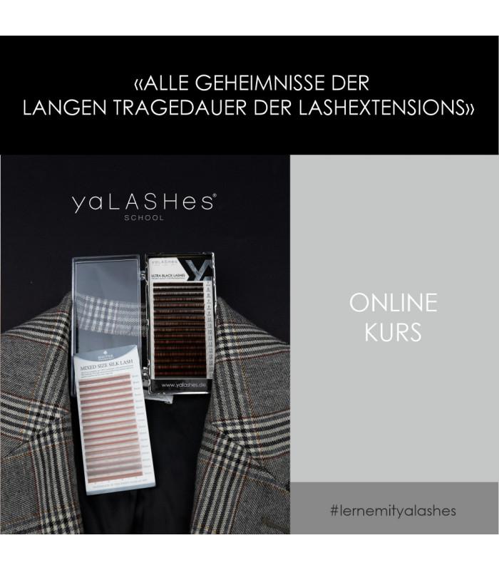 """Online-Kurse Videokurs """"Alle Geheimnisse der langen Tragedauer der Lashextensions"""""""
