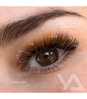 Wimpern Wimpern BEAUTIER Brown