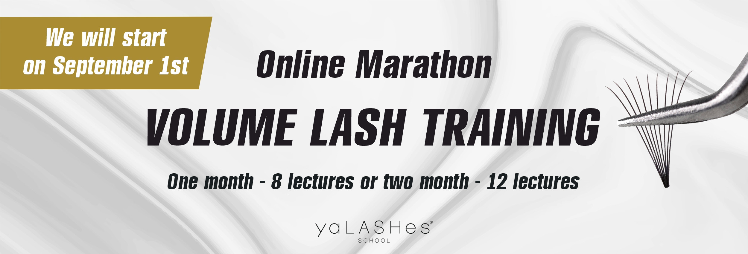 """Online Fan and Volume Training Course """"Lashmaker Upgrade""""."""